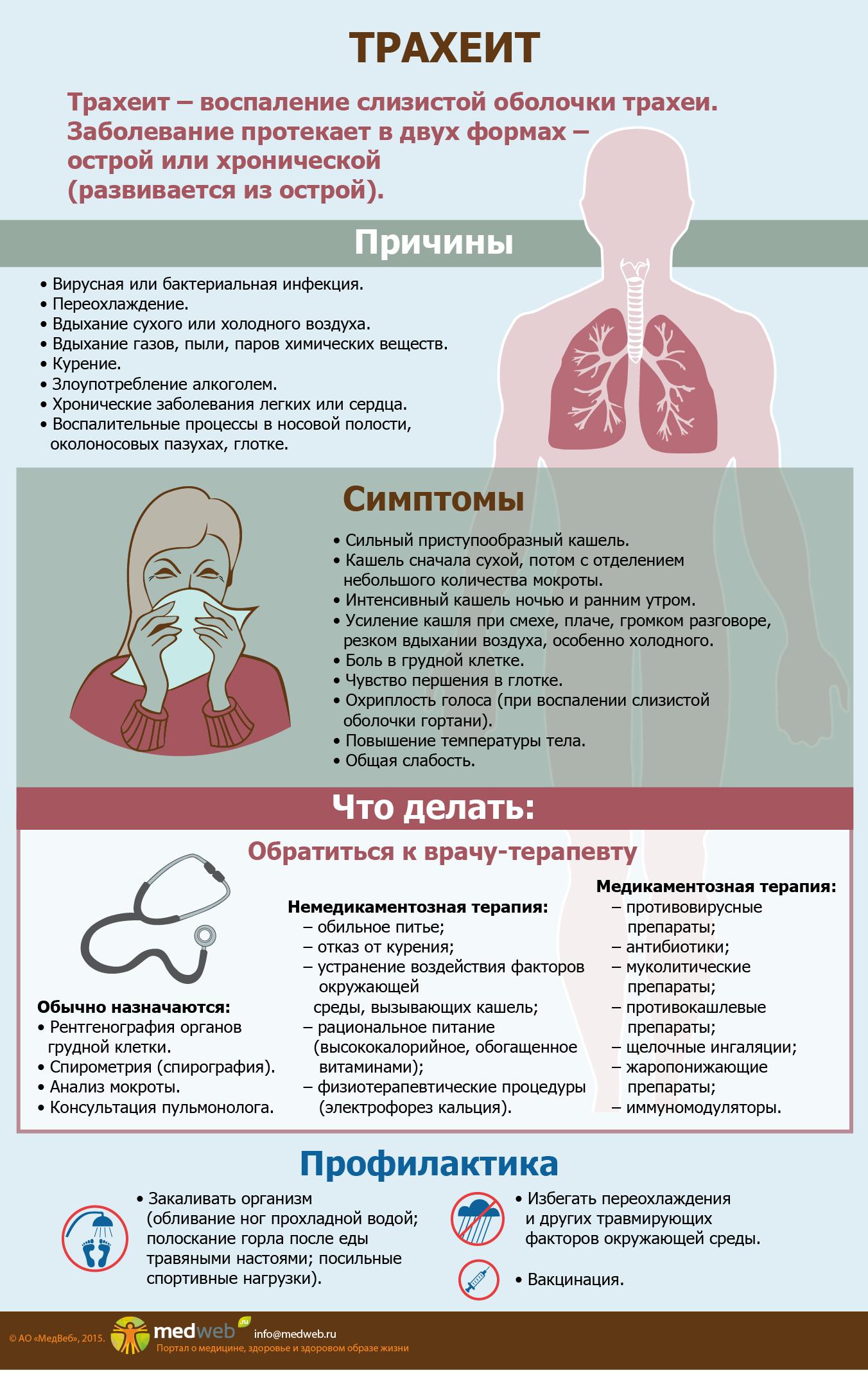 Диагностика трахеита – к какому врачу обратиться?