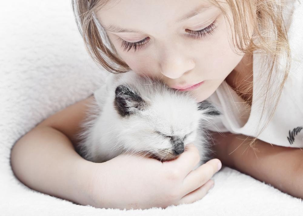 Анималотерапия: общение с животными как лекарство