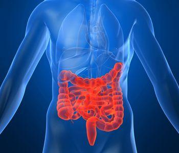Левосторонний колит кишечника хронический - симптомы и