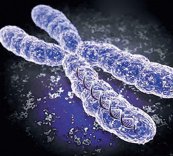 Проект Генома Человека фото